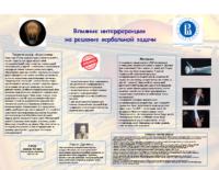 ВШЭ_Березнер